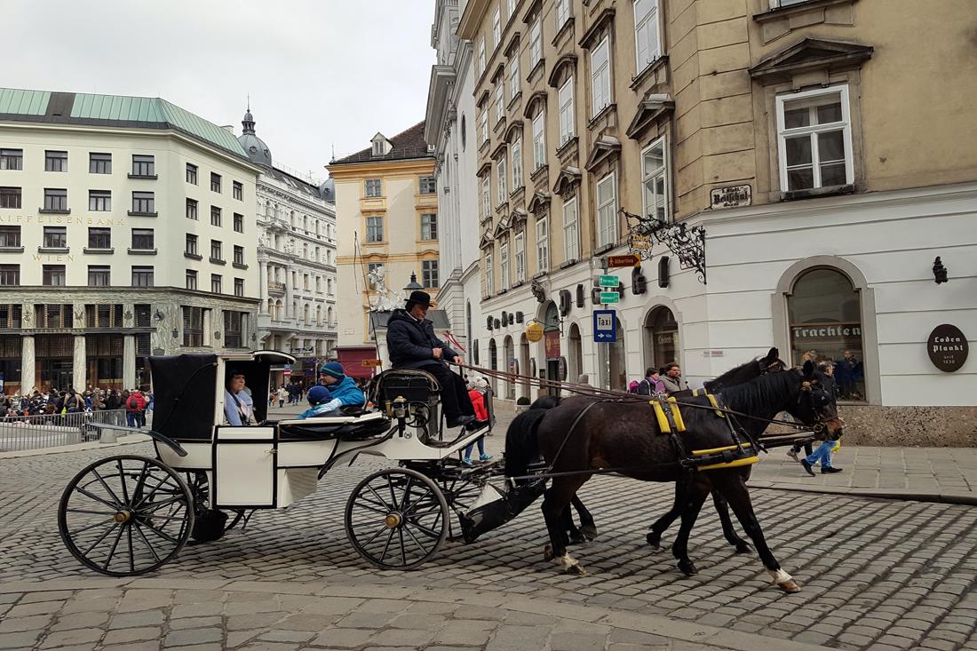 Fiaker-Wien-Hofburg